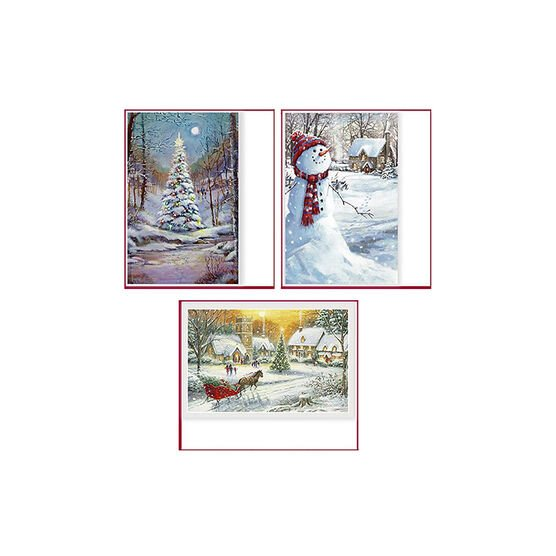 American Greetings Premium Christmas Cards - Outdoor - 14 count - Assorted