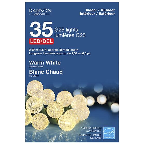 Danson Outdoor LED Ball Lights - White - 35's