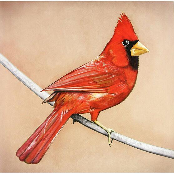 Alexisonfire - Old Crows/Young Cardinals - 180g Vinyl