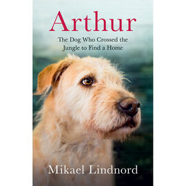Arthur by Mikael Lindnord