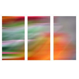 Myah Canvas Set - Fireworks - Set of 3