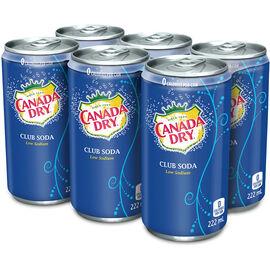 Canada Dry Soda Water - 6 x 222ml