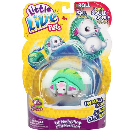 Little Live Pets - Hedgehog - Assorted - 28334
