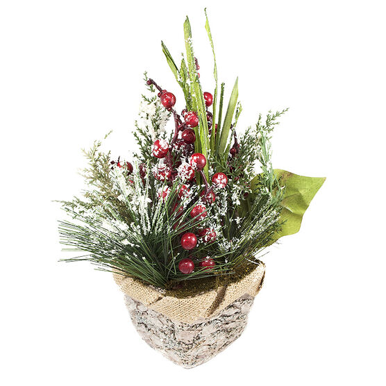 Christmas Potted Green Frosted Birch - 9in