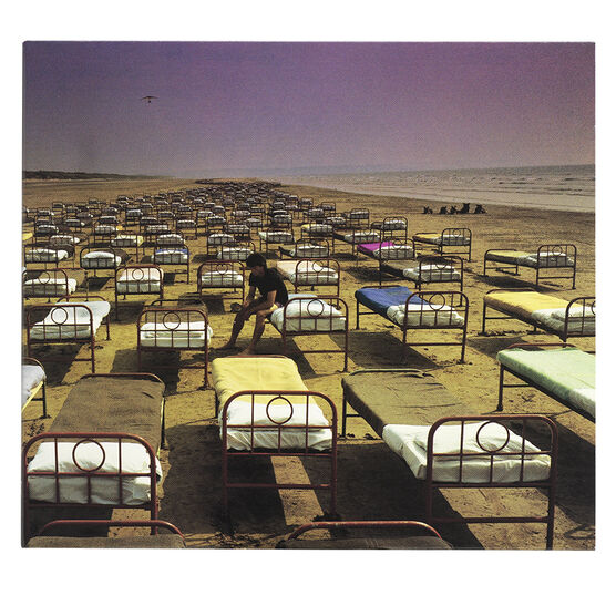 Pink Floyd - Momentary Lapse of Reason - CD