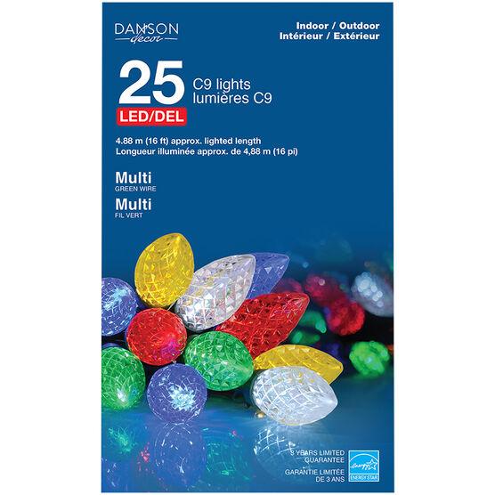 Danson LED Lights - 25 lights - Multicolour - X77299