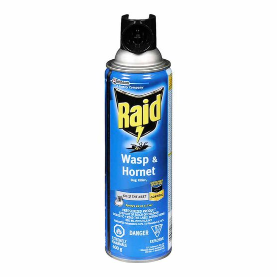Raid Wasp & Hornet Spray - 400g