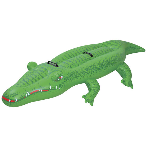 Fun Crocodile Rider - 75 x 37.5X12in
