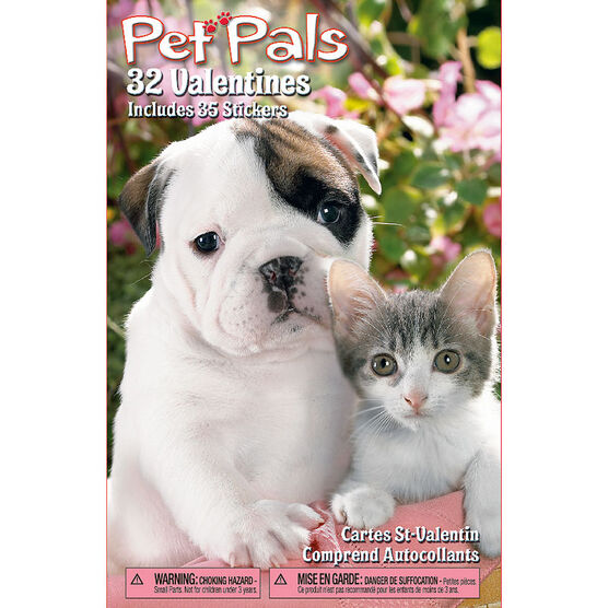Plus Mark Pet Pals Valentine's Day Cards - 32 pack