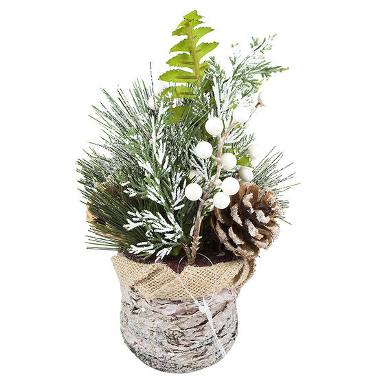 Christmas Potted Green Birch with Berries - 9in
