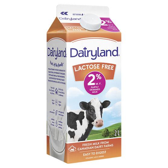 Dairyland 2% Partly Skimmed Milk - Lactose Free - 2L