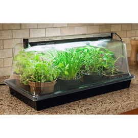 SunBlaster Nanodome Greenhouse - 1600205