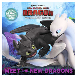 Meet The New Dragons by Maggie Testa