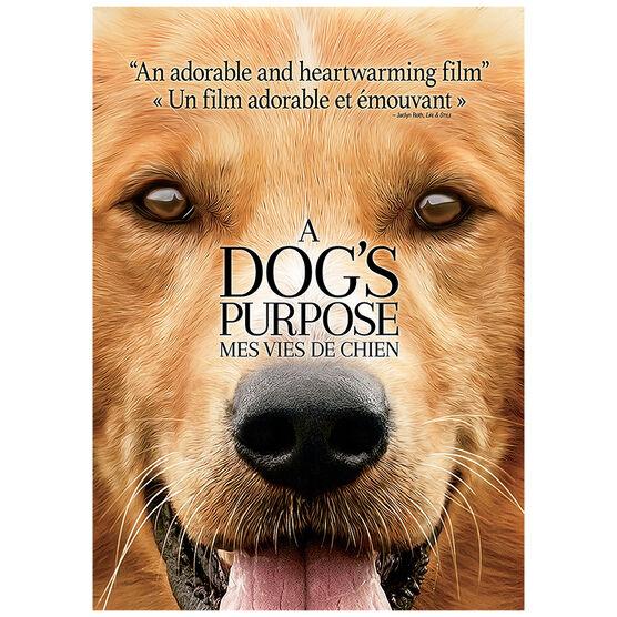 A Dog's Purpose - DVD