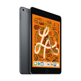 Apple iPad mini Cellular - 7.9 - 256GB