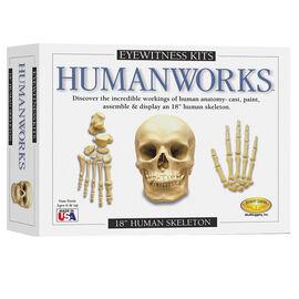 Eyewitness Kit Humanworks