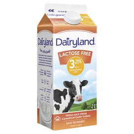 Dairyland Homo Milk - Lactose Free - 2L
