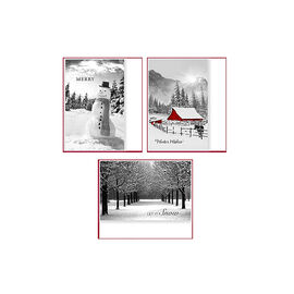 American Greetings Premium Christmas Cards - Black and White Photo - 14 count -  Assorted