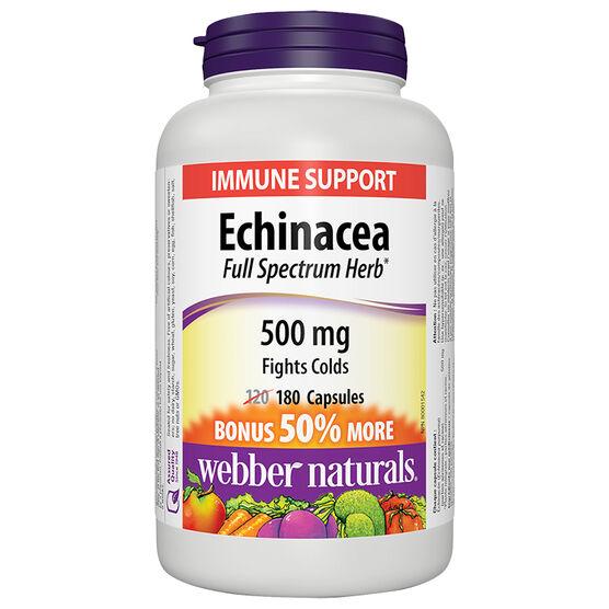 Webber Naturals Echinacea Full Spectrum Herb - 500mg - 120's