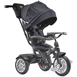 Bentley Tricycle Convertible Stroller