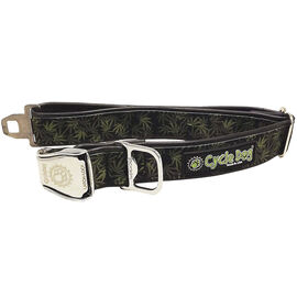 Cycledog Collar