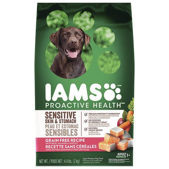 IAMS Grain Free Dog Food - Salmon/Lentils - 2kg