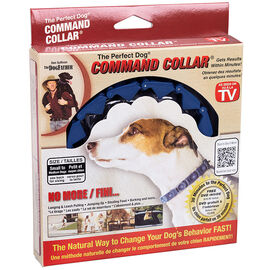 The Perfect Command Collar - Small/Medium