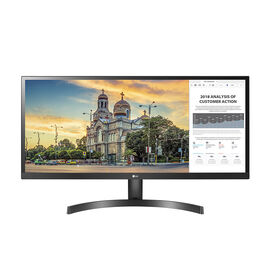 LG 29-inch Ultrawide IPS Gaming Monitor with AMD Freesync - 29WK500-P