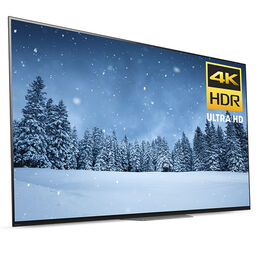 Sony 65-in OLED 4K UHD HDR Android TV - XBR65A8F
