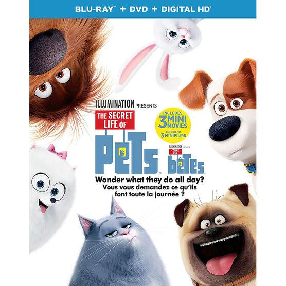 The Secret Life of Pets - Blu-ray