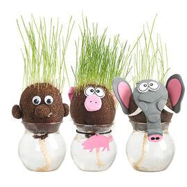 London Drugs Grass Head Dolls - Assorted