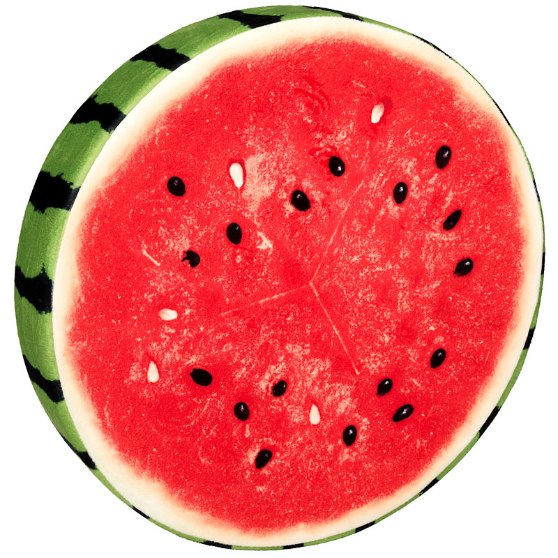 London Drugs Fruit Slice Foam Cushion - Watermelon