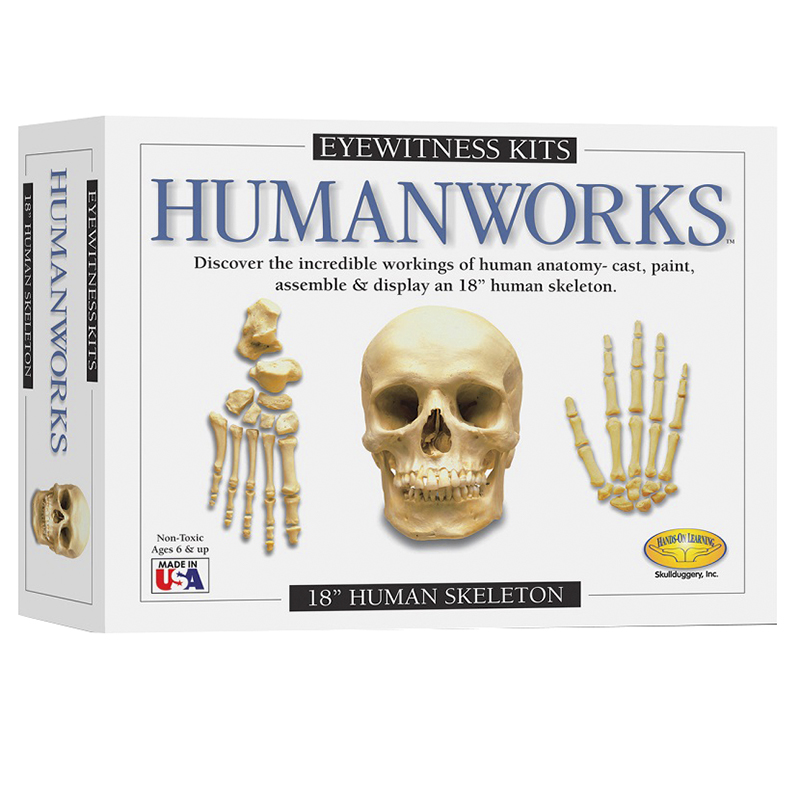 Eyewitness Kit Humanworks