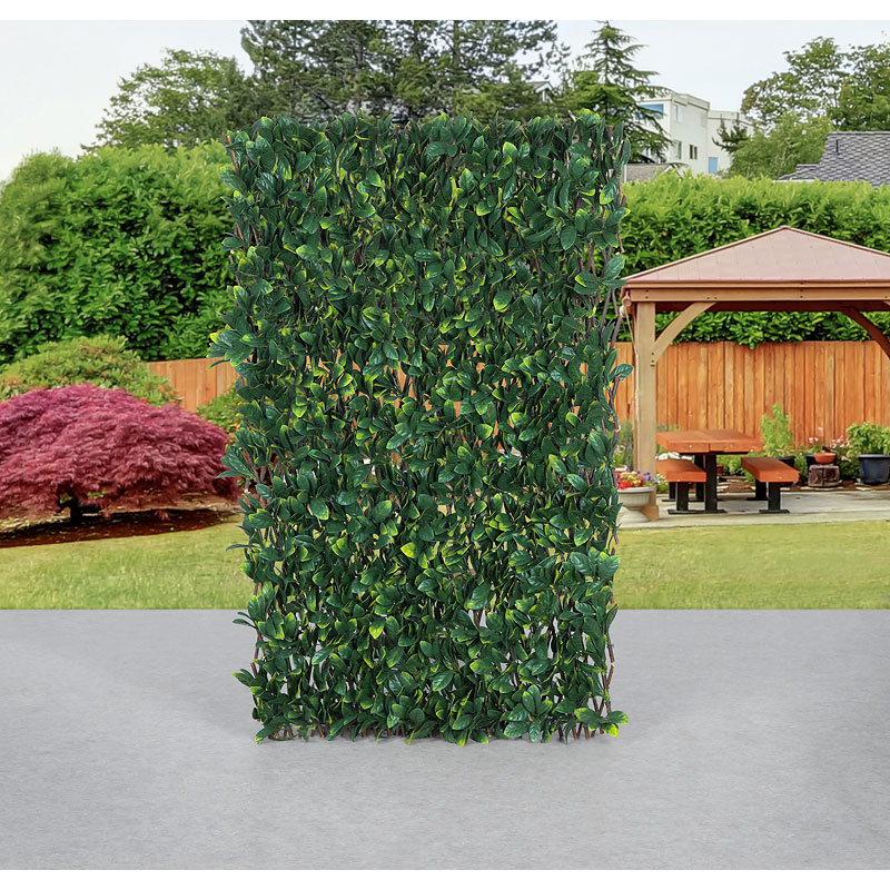 Camellia Leaf Privacy Screen - 6.7 x 3.3ft
