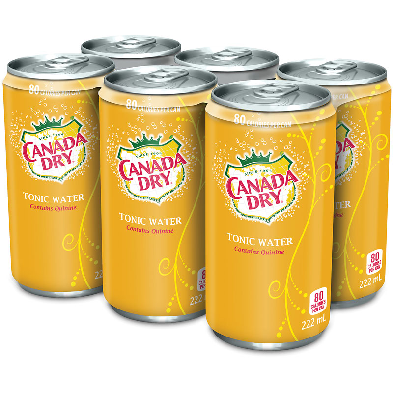 Canada Dry Tonic Water - 6 x222ml