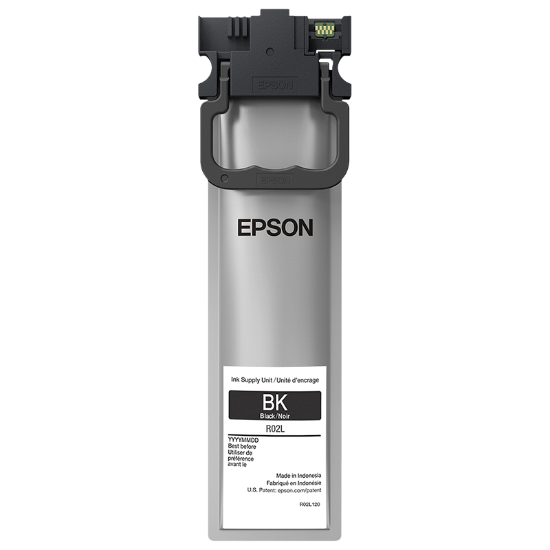 Epson R02L Black Ink Pack - R02L120