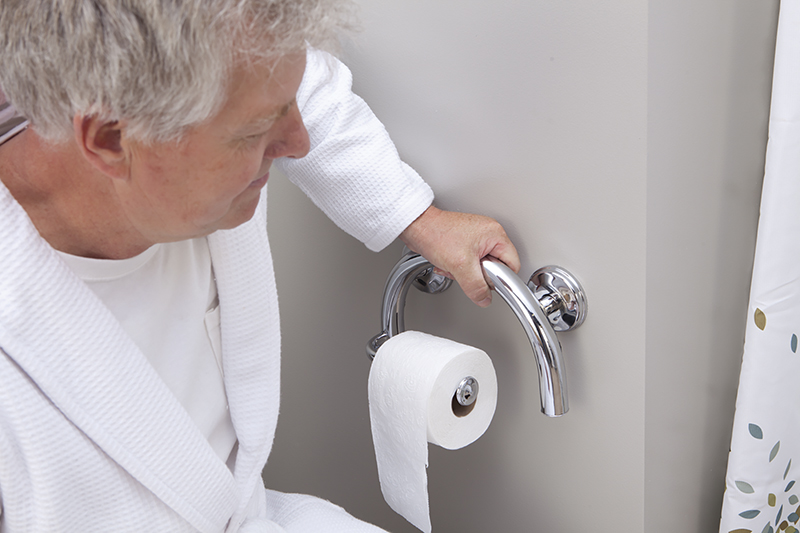 BIOS Living 2in1 Grab Bar Toilet Paper Holder - LF699